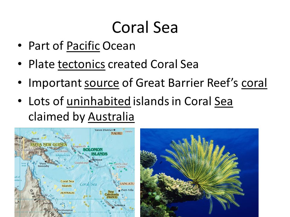 Coral Sea Part of Pacific Ocean Plate tectonics created Coral Sea