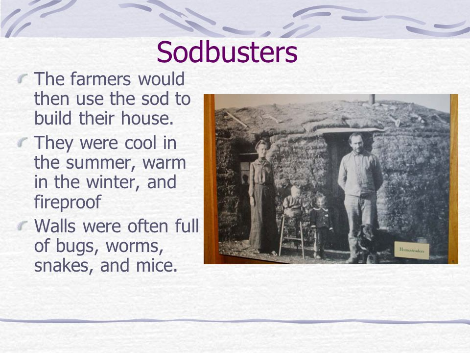 Sodbusters The farmers would then use the sod to build their house.