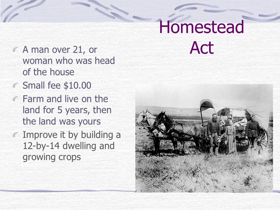 Homestead Act A man over 21, or woman who was head of the house