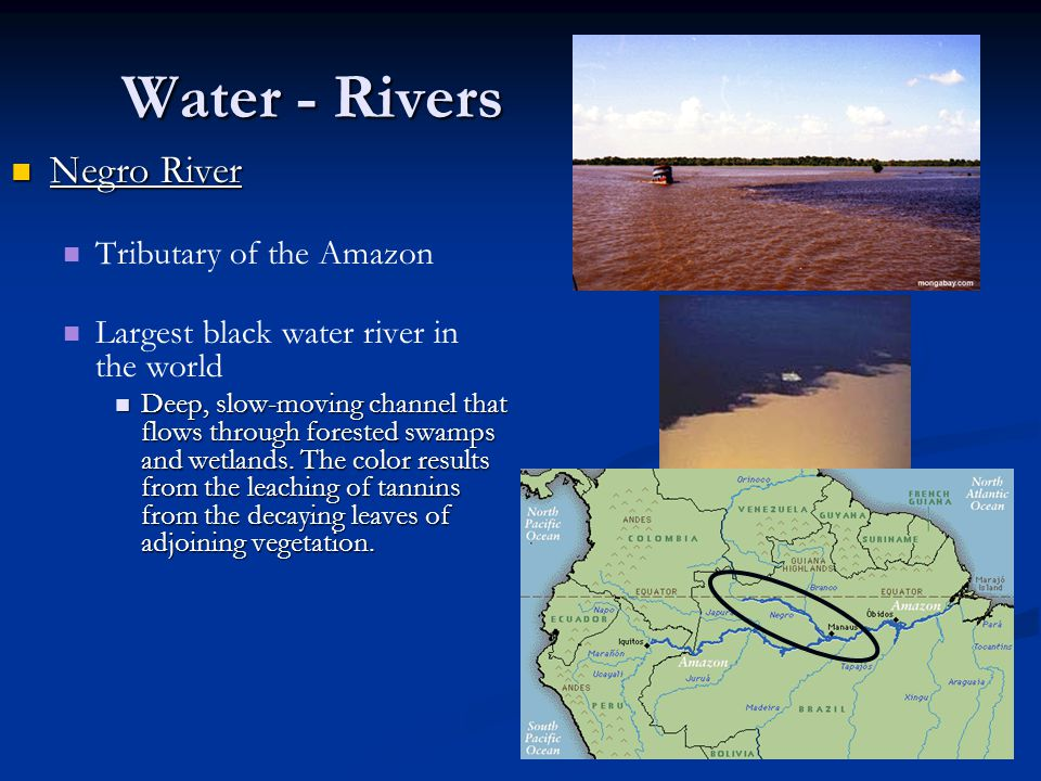 Water - Rivers Negro River Tributary of the Amazon