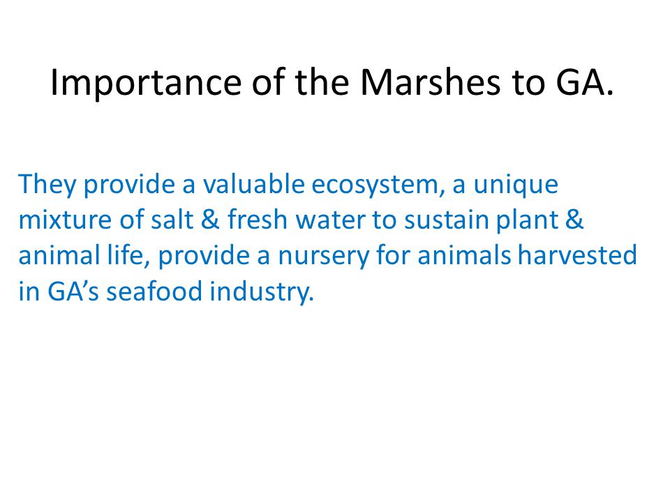 Importance of the Marshes to GA.