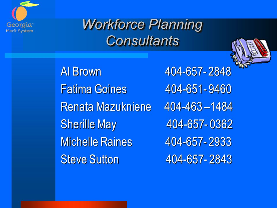 Workforce Planning Consultants