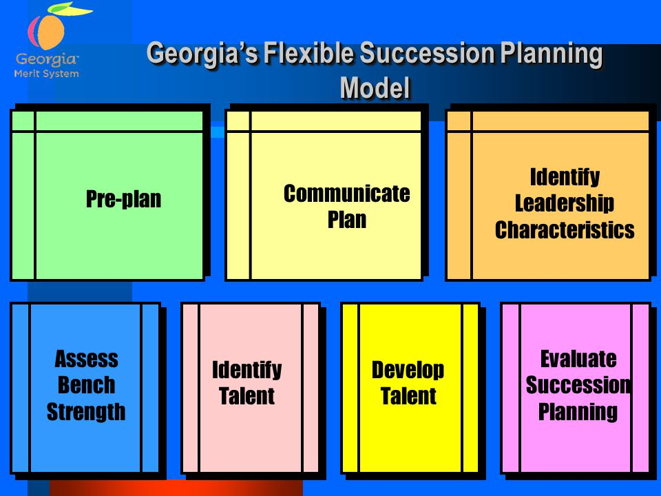 Georgia's Flexible Succession Planning Model