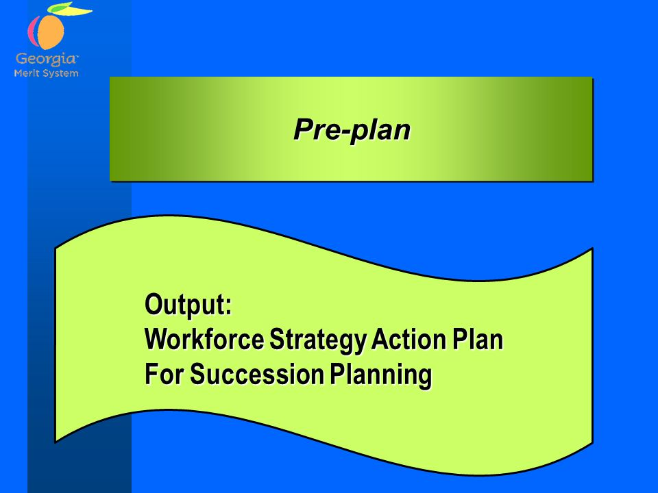 Pre-plan Output: Workforce Strategy Action Plan For Succession Planning