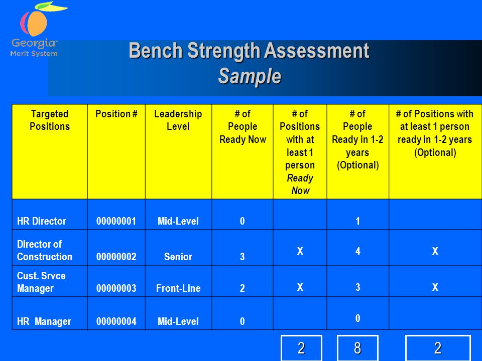 Bench Strength Assessment Sample