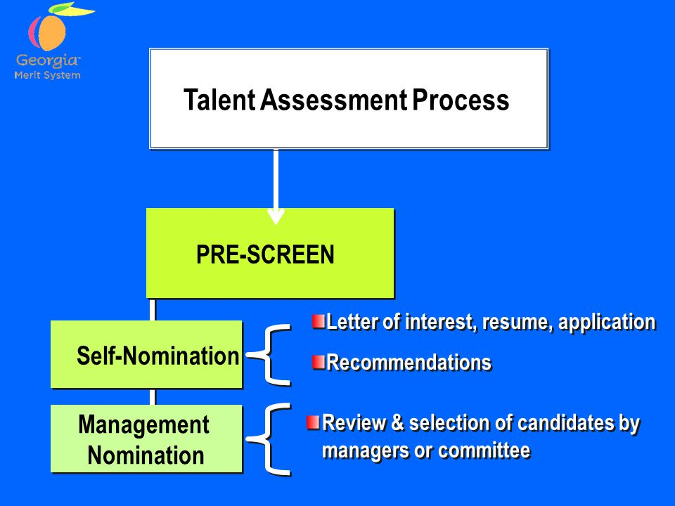 Talent Assessment Process