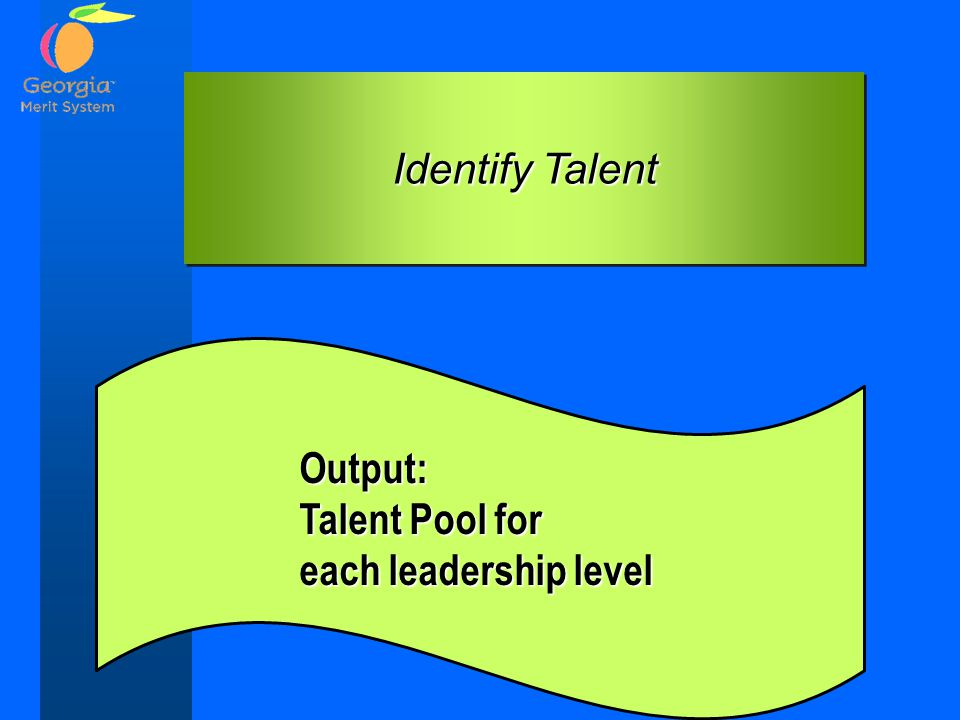 Identify Talent Output: Talent Pool for each leadership level