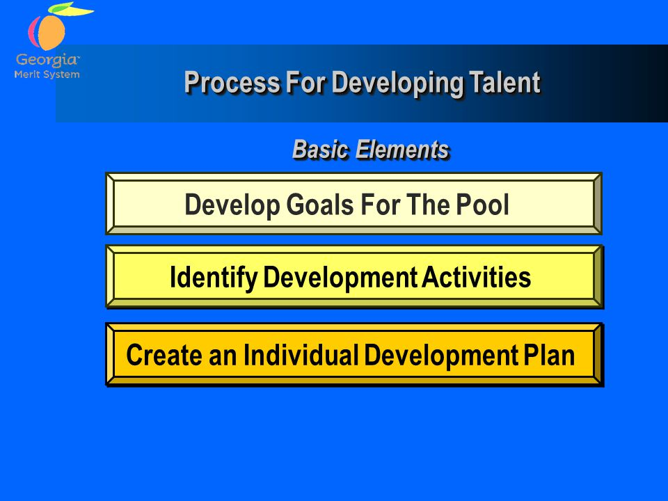 Process For Developing Talent
