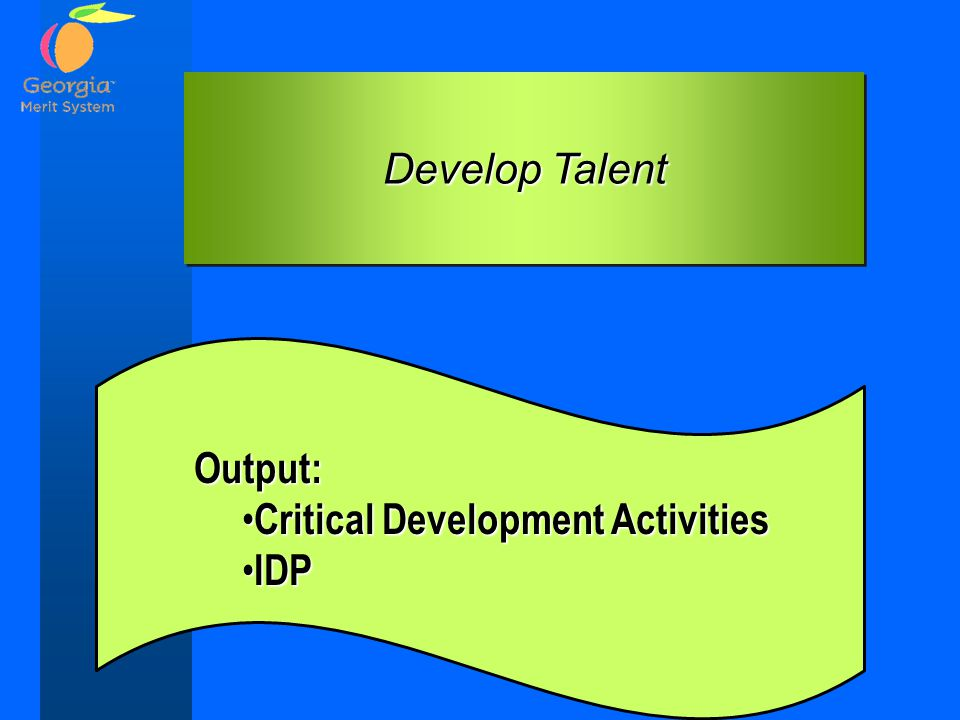 Develop Talent Output: Critical Development Activities IDP