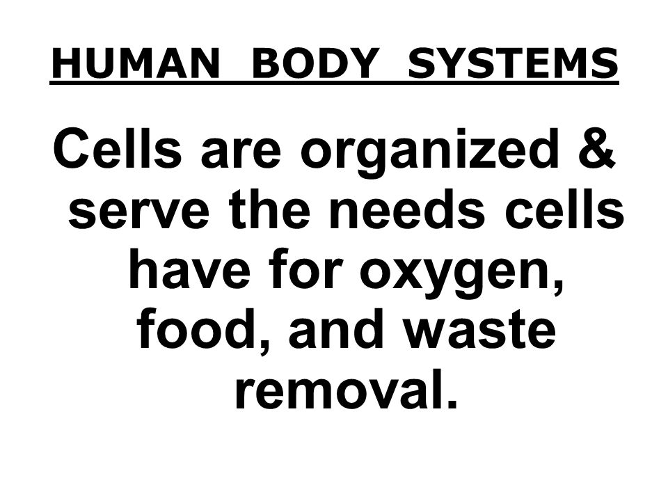 HUMAN BODY SYSTEMS Cells are organized & serve the needs cells have for oxygen, food, and waste removal.
