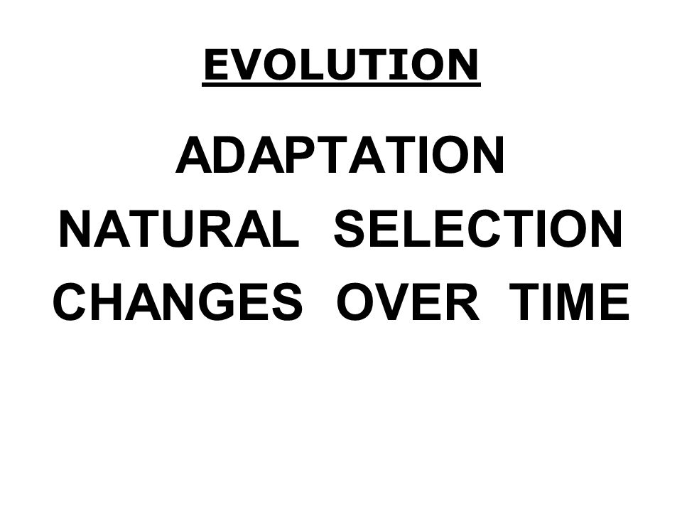 ADAPTATION NATURAL SELECTION CHANGES OVER TIME