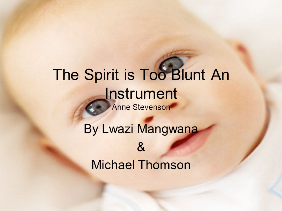 The Spirit is Too Blunt An Instrument Anne Stevenson