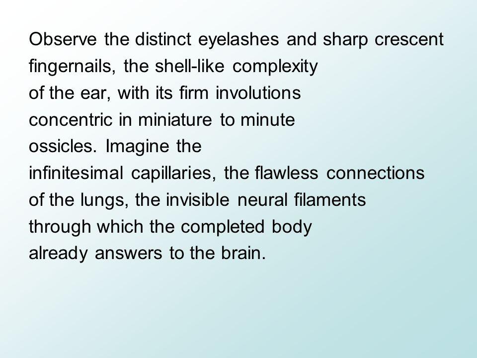 Observe the distinct eyelashes and sharp crescent