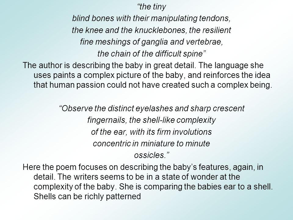 blind bones with their manipulating tendons,