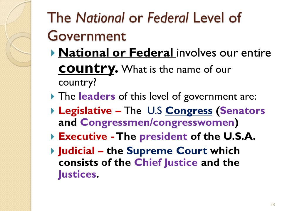 The National or Federal Level of Government