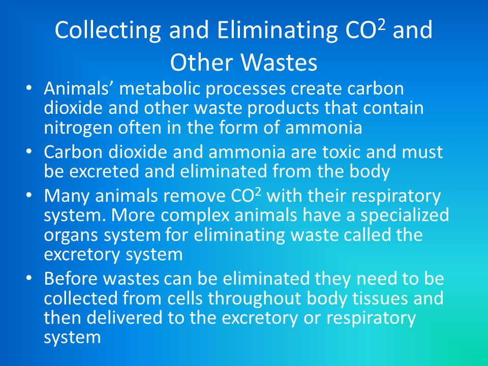 Collecting and Eliminating CO2 and Other Wastes