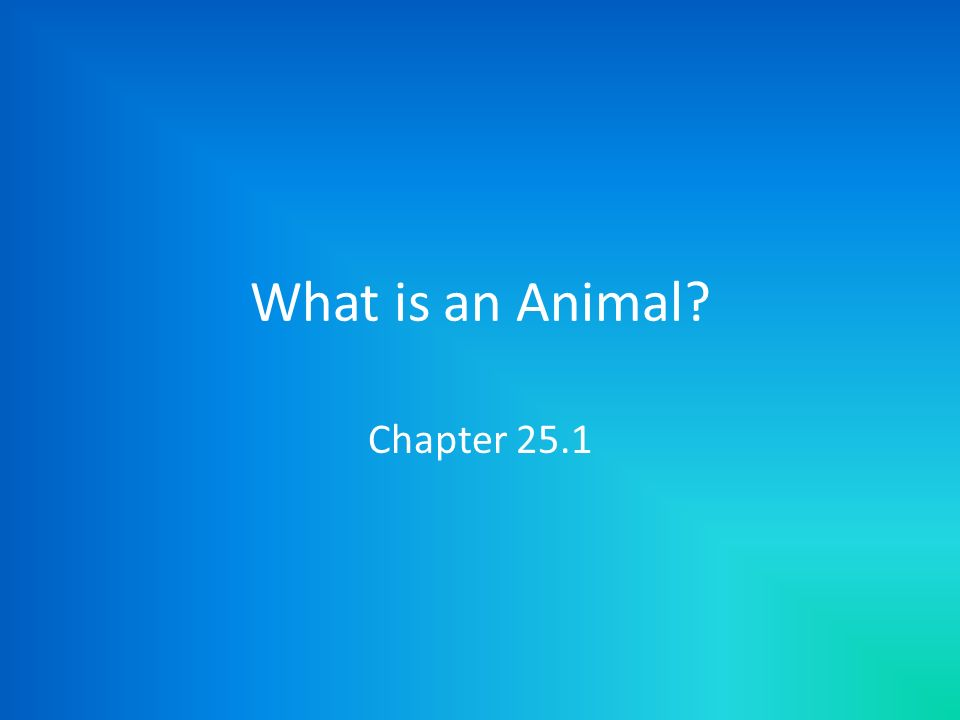 What is an Animal Chapter 25.1