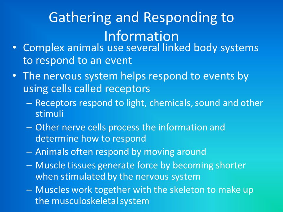 Gathering and Responding to Information