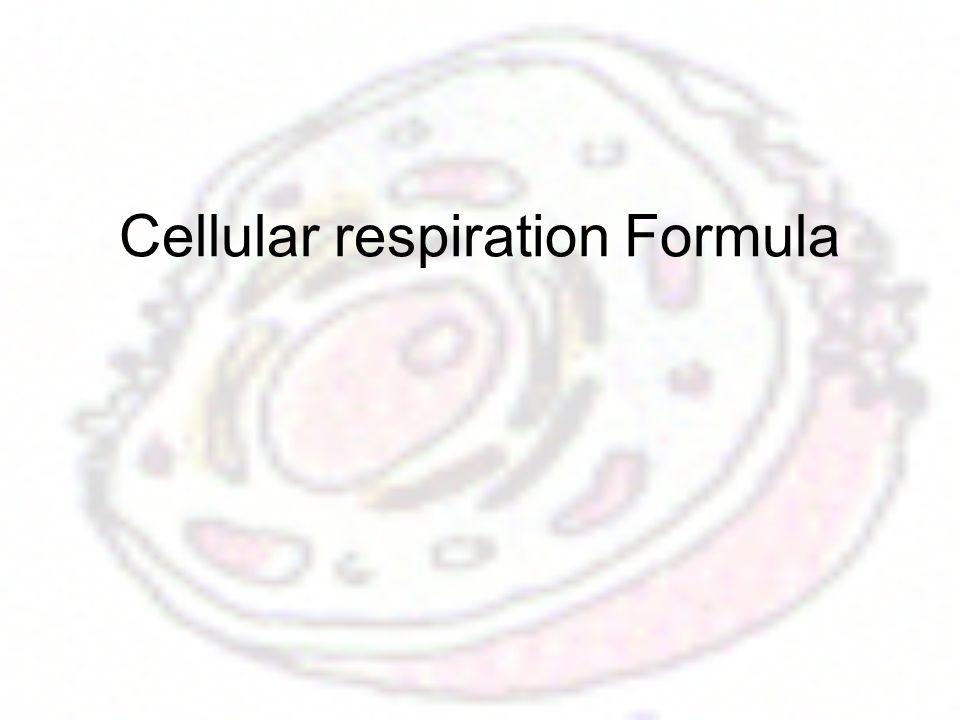 Cellular respiration Formula