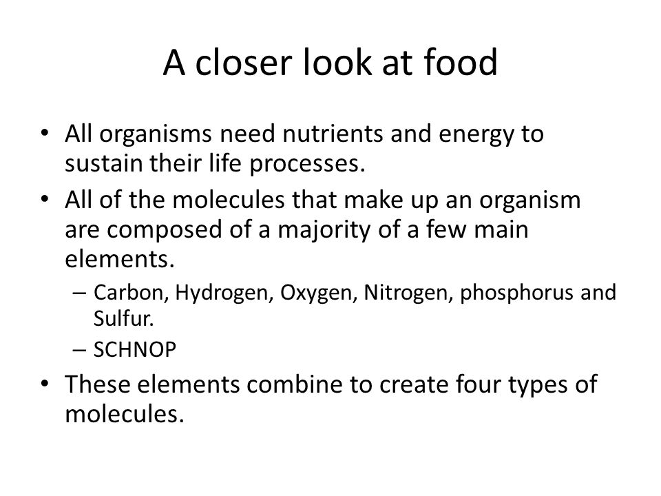 A closer look at food All organisms need nutrients and energy to sustain their life processes.