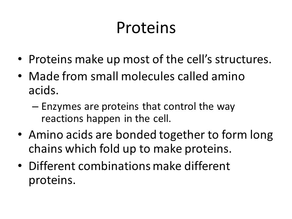 Proteins Proteins make up most of the cell's structures.