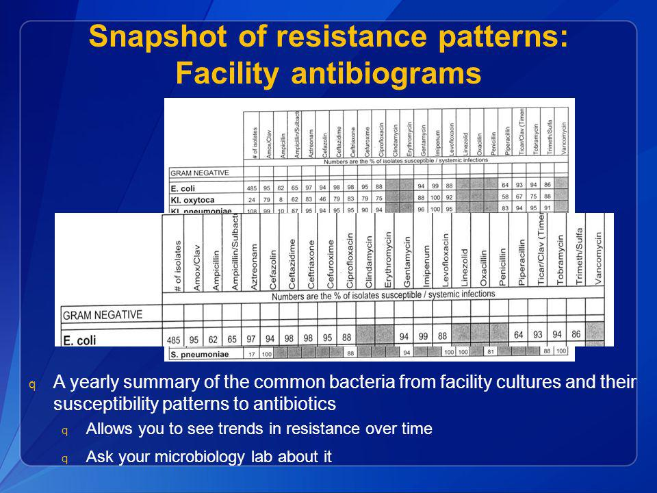 Snapshot of resistance patterns: Facility antibiograms