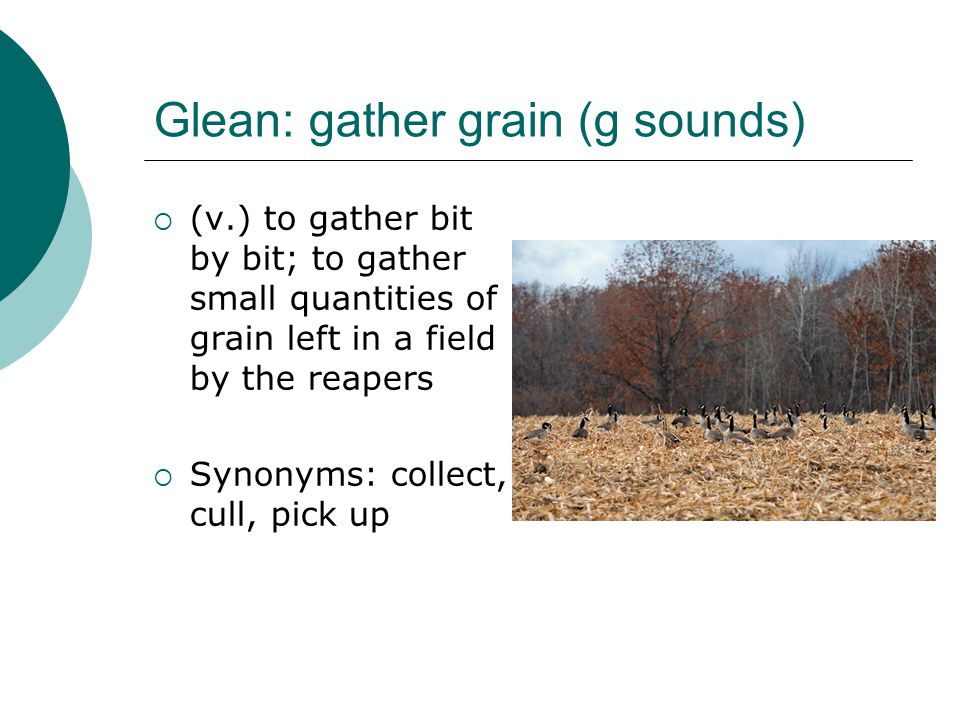 Glean: gather grain (g sounds)