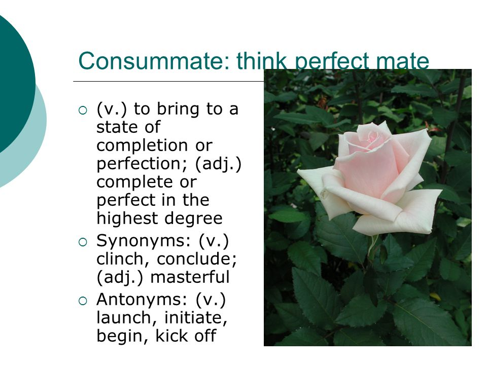 Consummate: think perfect mate