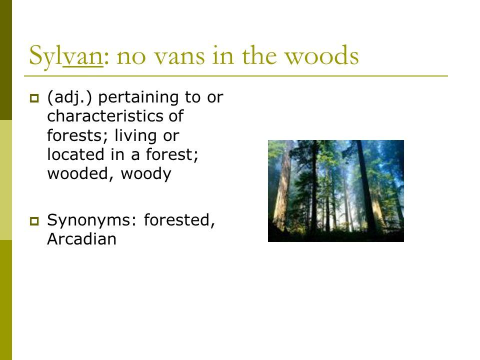 Sylvan: no vans in the woods