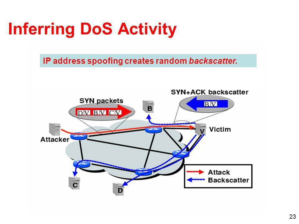 Inferring DoS Activity