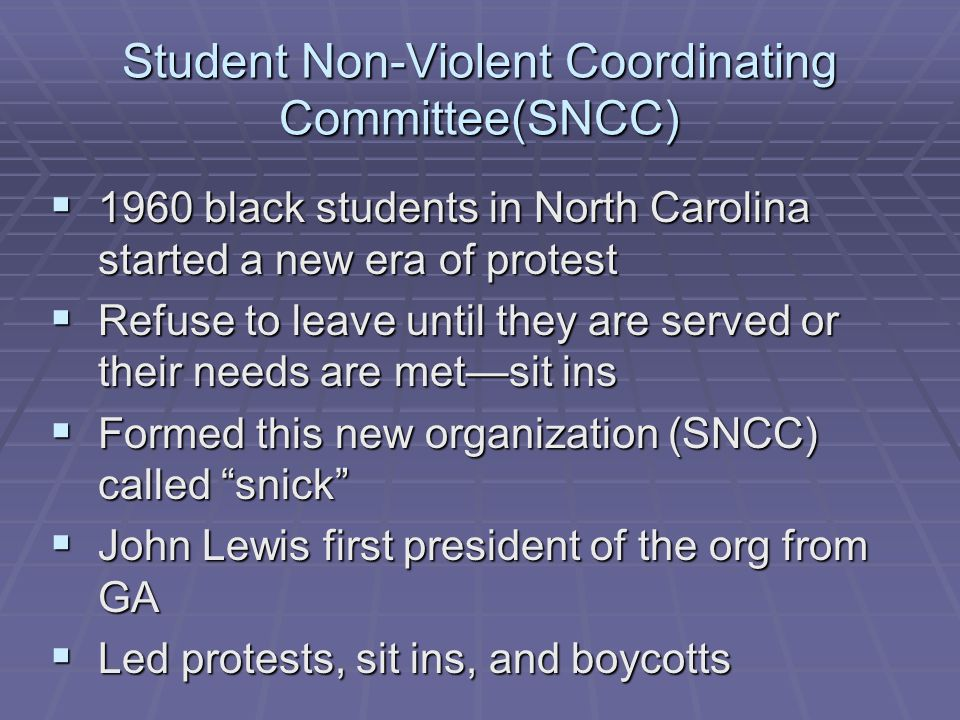 Student Non-Violent Coordinating Committee(SNCC)