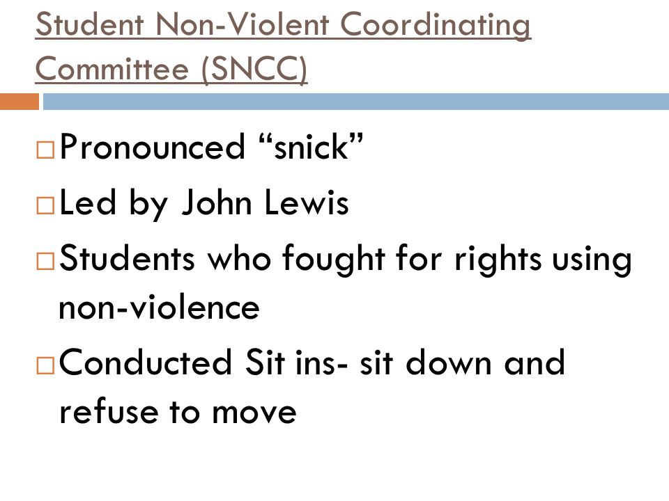 Student Non-Violent Coordinating Committee (SNCC)