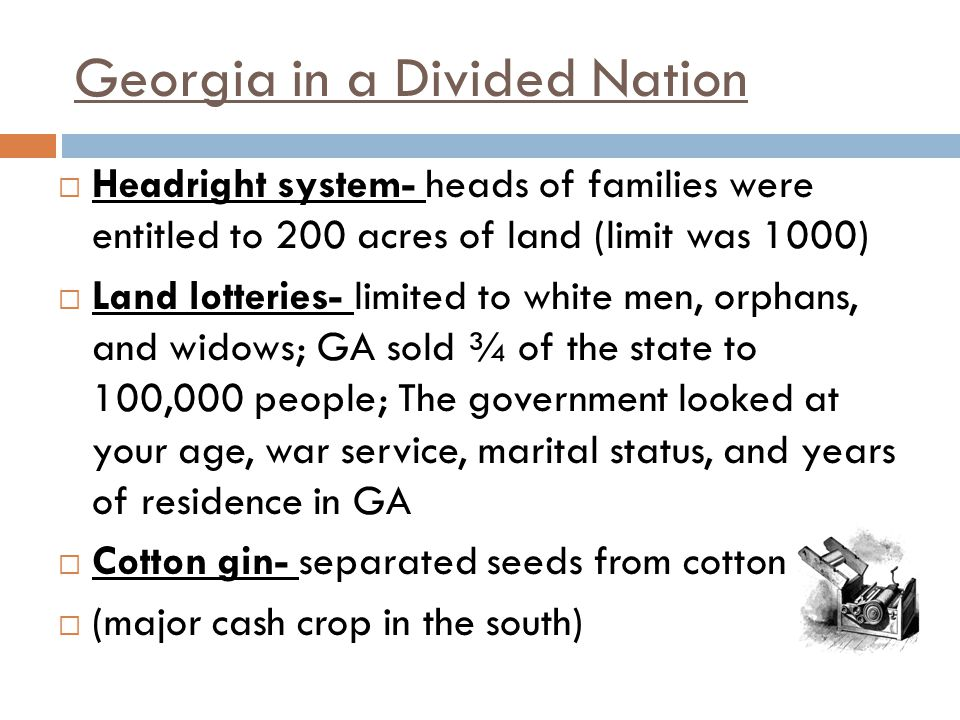 Georgia in a Divided Nation