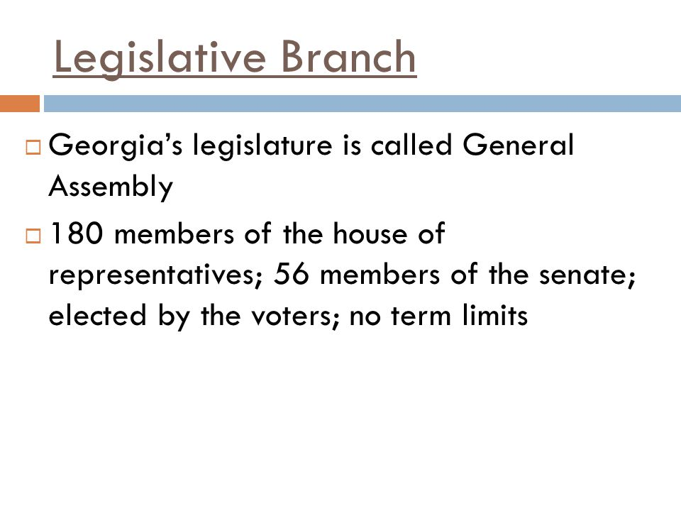 Legislative Branch Georgia's legislature is called General Assembly