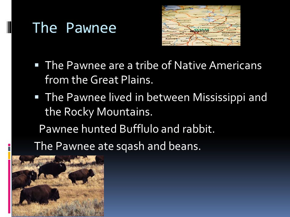 The Pawnee The Pawnee are a tribe of Native Americans from the Great Plains. The Pawnee lived in between Mississippi and the Rocky Mountains.