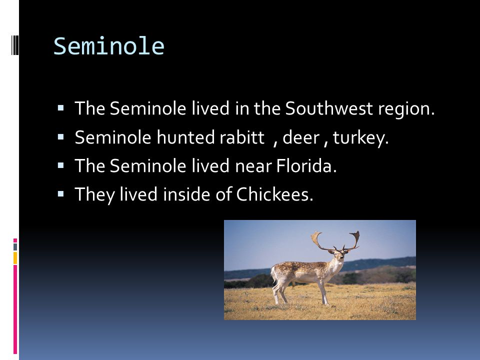 Seminole The Seminole lived in the Southwest region.