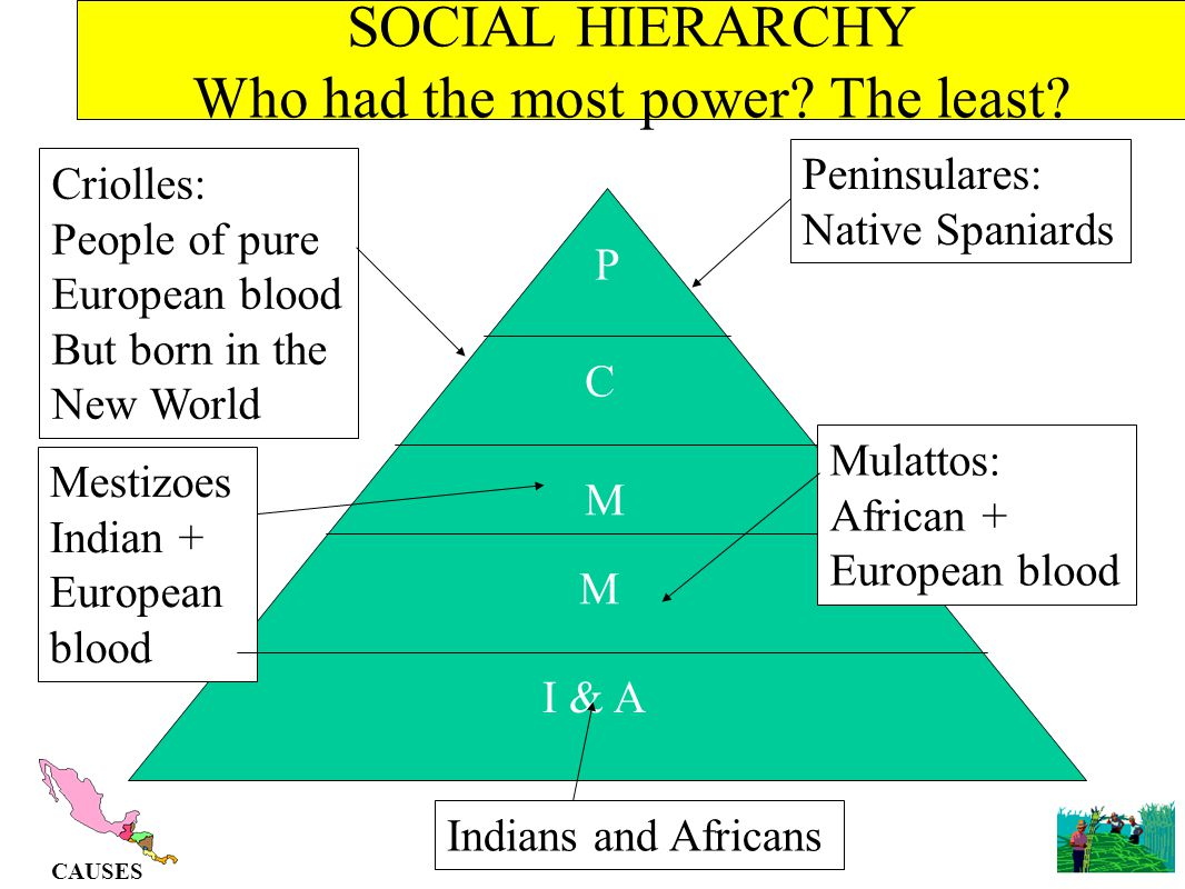 SOCIAL HIERARCHY Who had the most power The least