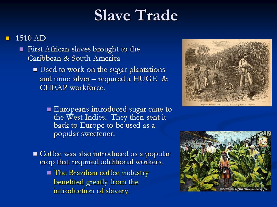 Slave Trade 1510 AD. First African slaves brought to the Caribbean & South America.