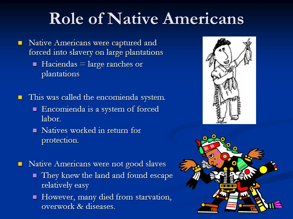 Role of Native Americans