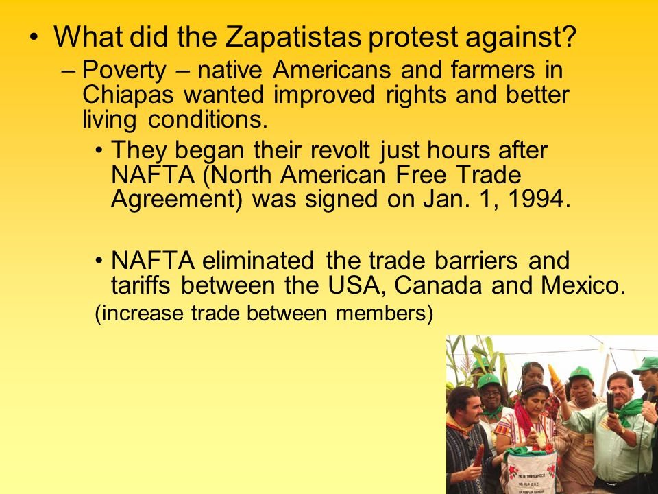 What did the Zapatistas protest against