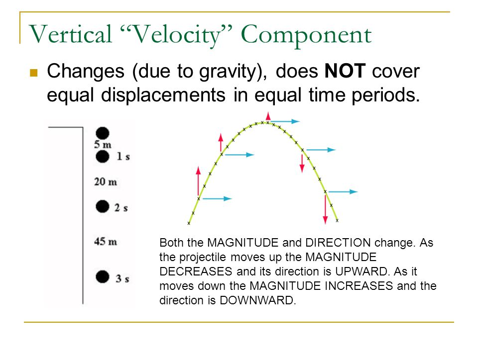 Vertical Velocity Component