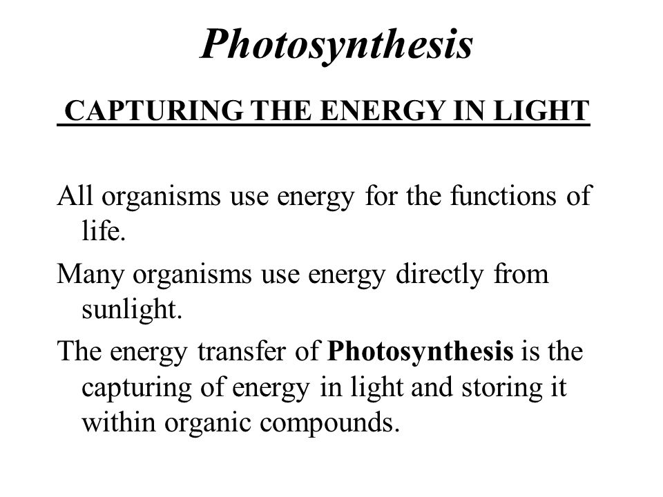 Photosynthesis CAPTURING THE ENERGY IN LIGHT