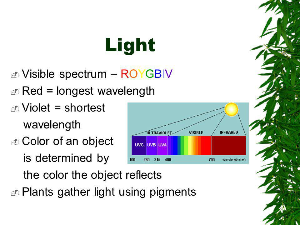 Light Visible spectrum – ROYGBIV Red = longest wavelength