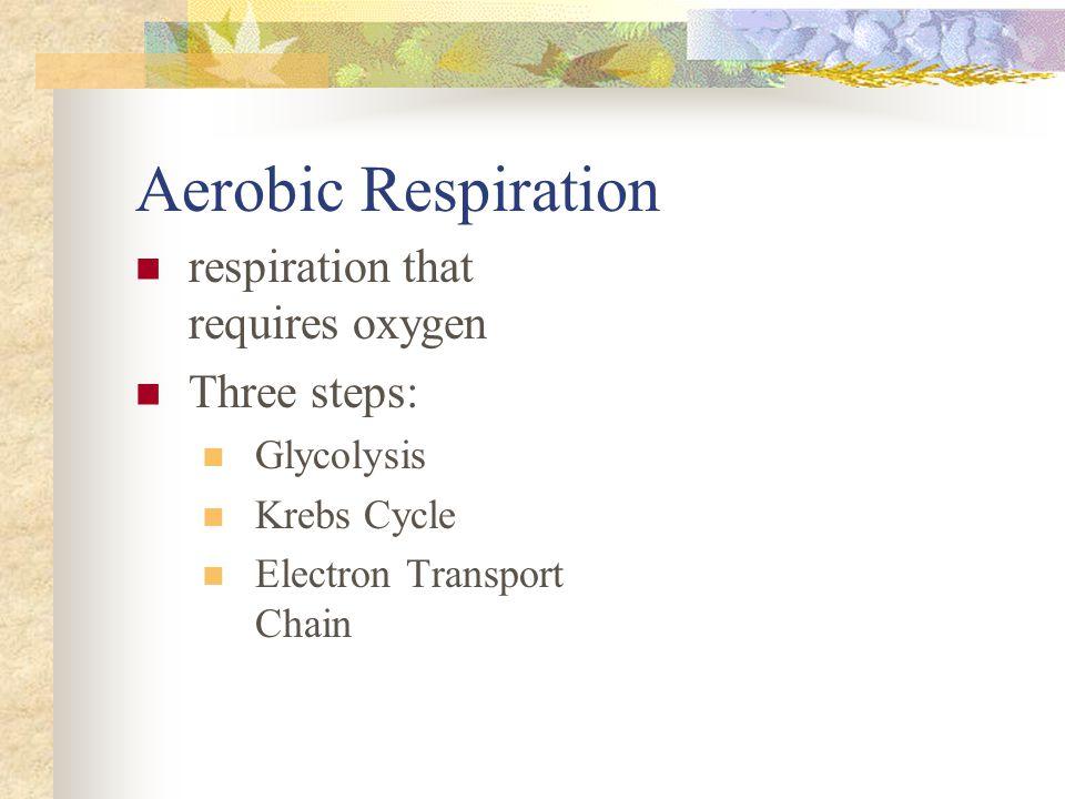 Aerobic Respiration respiration that requires oxygen Three steps: