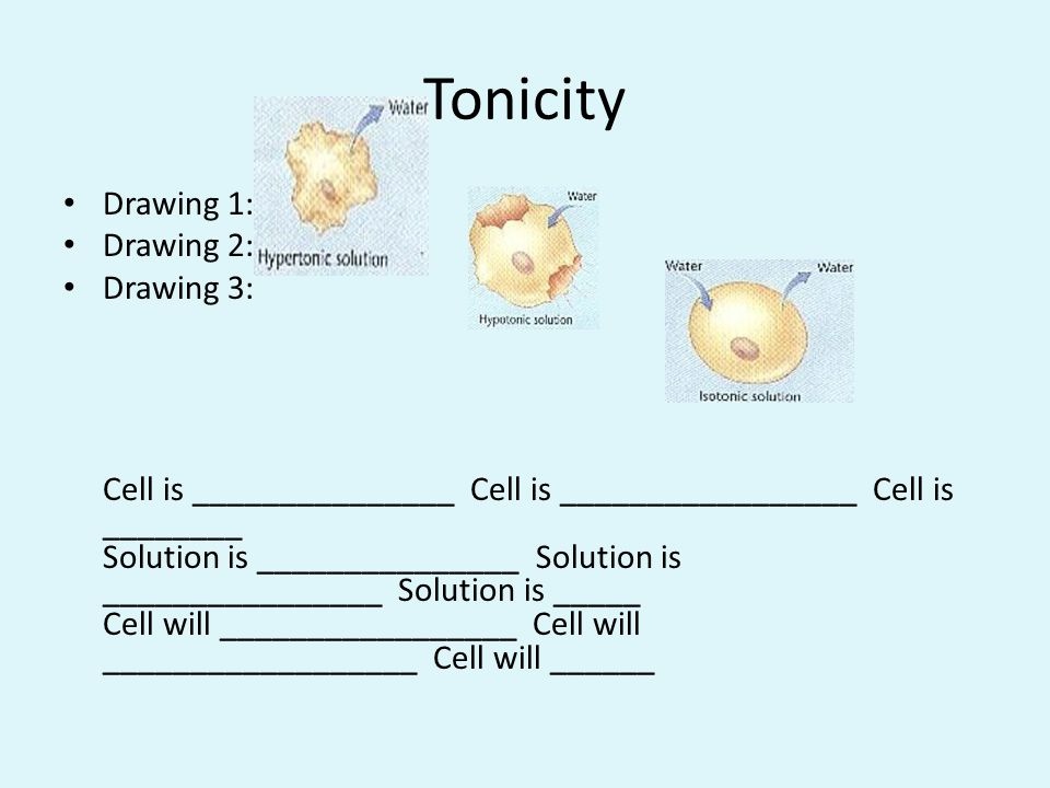 Tonicity Drawing 1: Drawing 2: