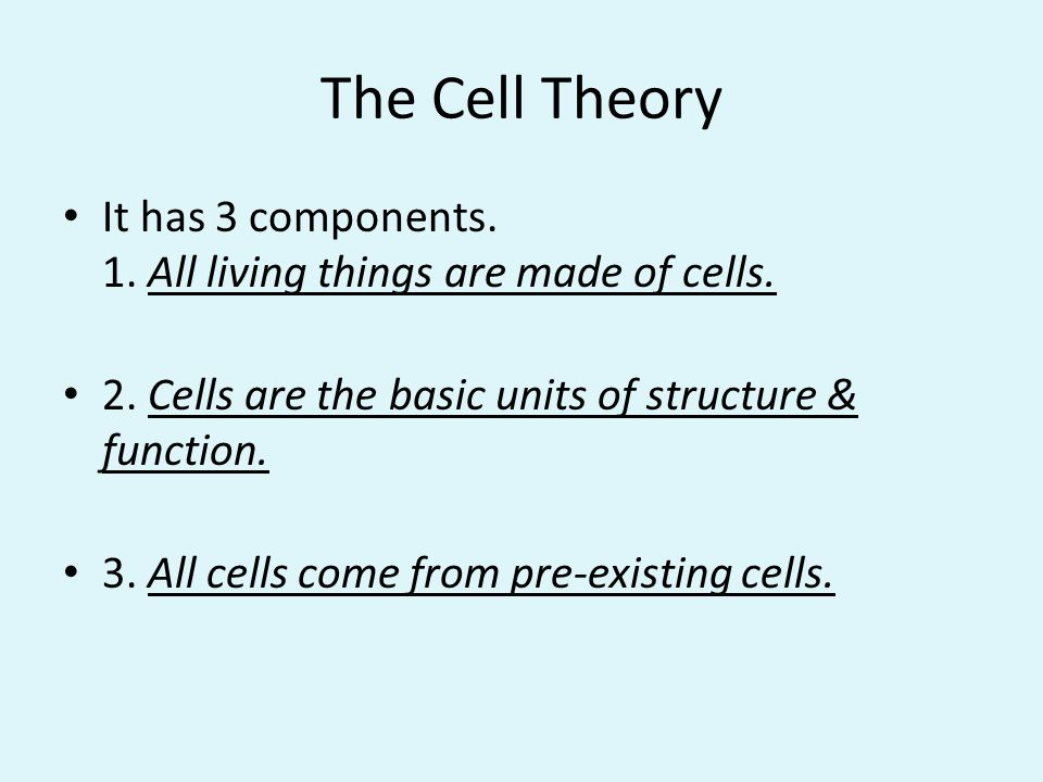 The Cell Theory It has 3 components. 1. All living things are made of cells. 2. Cells are the basic units of structure & function.