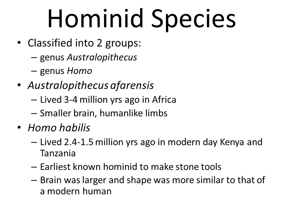 Hominid Species Classified into 2 groups: Australopithecus afarensis