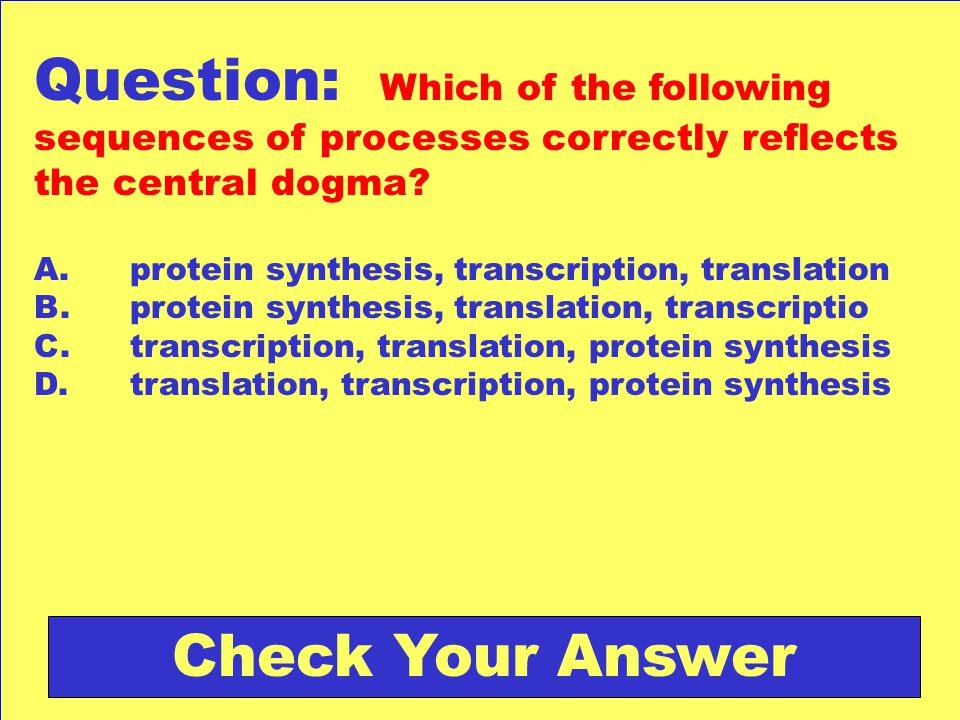 Question: Which of the following sequences of processes correctly reflects the central dogma