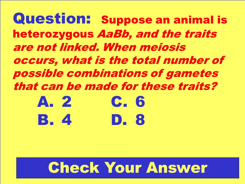 Question: Suppose an animal is heterozygous AaBb, and the traits are not linked. When meiosis occurs, what is the total number of possible combinations of gametes that can be made for these traits