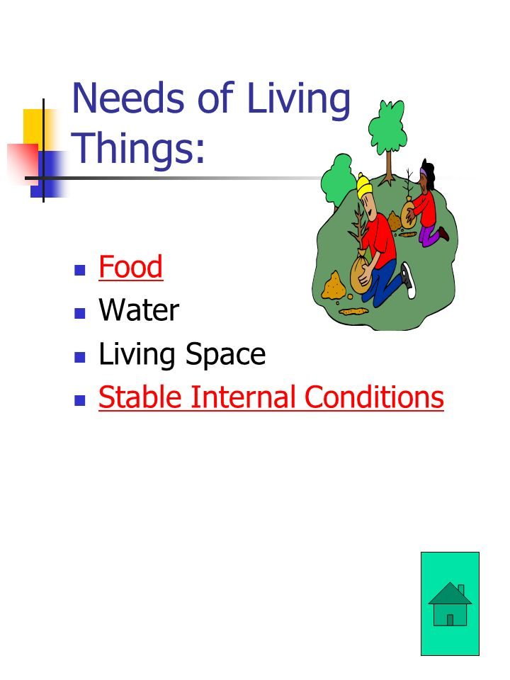 Needs of Living Things: